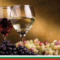 Thracian Wineyard-12