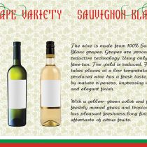 Thracian Wineyard-13
