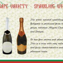 Thracian Wineyard-15
