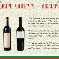 Thracian Wineyard-7