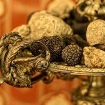 Thracian Truffles Photography (15)