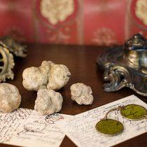 Thracian Truffles Photography (8)